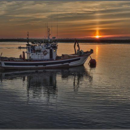 fermo pesca 2019